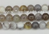 CAA224 15.5 inches 8mm round botswana agate gemstone beads