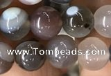 CAA2380 15.5 inches 8mm round Botswana agate beads wholesale