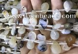 CAA3837 Top drilled 10*14mm faceted briolette montana agate beads