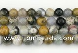 CAA5334 15.5 inches 12mm round ocean agate beads wholesale