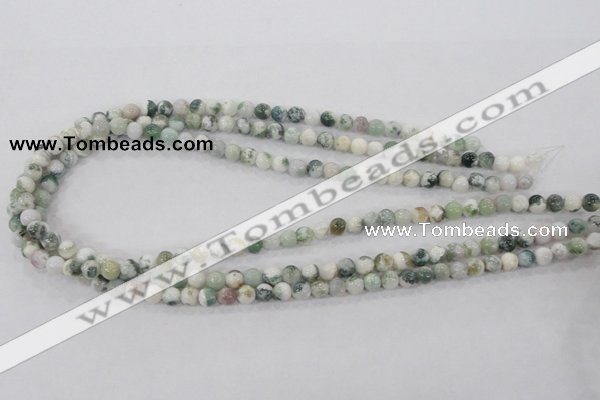 CAA700 15.5 inches 6mm round tree agate gemstone beads wholesale