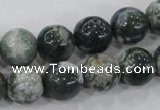 CAA703 15.5 inches 12mm round tree agate gemstone beads wholesale