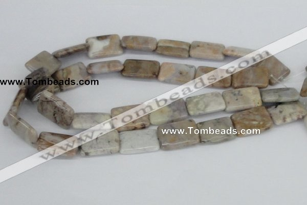 CAB112 15.5 inches 18*25mm rectangle natural brazil agate beads