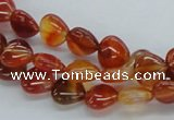 CAB502 15.5 inches 10*10mm heart red agate gemstone beads wholesale