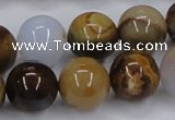 CAB593 15.5 inches 16mm round mexican agate gemstone beads wholesale
