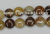 CAB600 15.5 inches 10mm flat round mexican agate gemstone beads