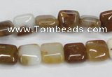 CAB602 15.5 inches 10*10mm square mexican agate gemstone beads wholesale