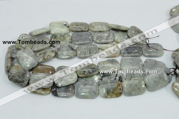 CAB88 15.5 inches 22*30mm rectangle silver needle agate gemstone beads