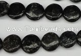 CAE45 15.5 inches 12mm flat round astrophyllite beads wholesale