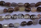CAG2770 15.5 inches 6*8mm nuggets botswana agate beads wholesale