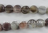 CAG3712 15.5 inches 10mm flat round botswana agate beads wholesale