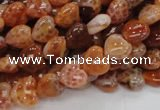 CAG627 15.5 inches 8*8mm heart natural fire agate beads wholesale