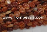 CAG629 15.5 inches 8mm coin natural fire agate beads wholesale