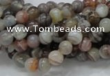 CAG735 15.5 inches 6mm round botswana agate beads wholesale