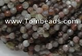 CAG742 15.5 inches 4mm faceted round botswana agate beads wholesale