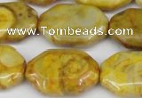 CAG7437 15.5 inches 20*30mm octagonal crazy lace agate beads
