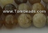 CAG9404 15.5 inches 12mm round ocean fossil agate beads wholesale