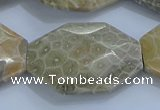 CAG9440 22*30mm - 25*35mm faceted freeform chrysanthemum agate beads
