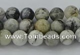 CAG9731 15.5 inches 6mm round black & white agate beads wholesale