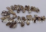 CAG9755 Top drilled 10*20mm - 16*50mm freeform ocean agate beads