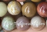 CAG9807 15.5 inches 10mm round wood agate beads wholesale