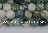 CAG9838 15.5 inches 6mm faceted round tree agate beads