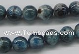 CAP06 15.5 inches 10mm round apatite gemstone beads wholesale
