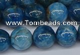 CAP414 15.5 inches 12mm round apatite gemstone beads wholesale