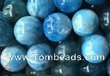 CAP578 15.5 inches 8mm round apatite beads wholesale