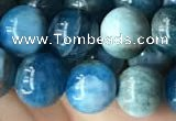 CAP579 15.5 inches 10mm round apatite beads wholesale
