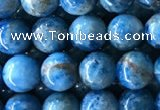 CAP583 15.5 inches 6mm round apatite gemstone beads