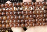 CAR237 15.5 inches 6mm - 7mm round natural amber beads wholesale