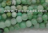 CAU301 15.5 inches 4mm round Australia chrysoprase beads wholesale