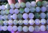 CAU475 15.5 inches 13mm round Australia chrysoprase beads
