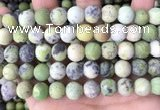 CAU480 15.5 inches 10mm round matte Australia chrysoprase beads
