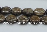 CBZ02 15.5 inches 14mm flat round bronzite gemstone beads wholesale