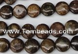 CBZ71 15.5 inches 10mm flat round bronzite gemstone beads