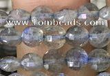 CCB540 15.5 inches 6mm faceted coin labradorite gemstone beads