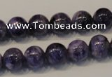 CCG32 15.5 inches 10mm round natural charoite gemstone beads