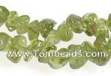 CCH16 35 inches green peridot chips gemstone beads wholesale