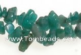 CCH21 34 inches amazonite chips gemstone beads wholesale