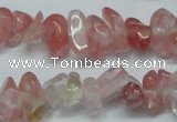 CCH237 34 inches 5*8mm cherry quartz chips beads wholesale