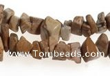 CCH27 35 inches picture jasper chips gemstone beads wholesale