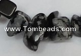 CCH299 34 inches 8*12mm snowflake obsidian chips gemstone beads wholesale