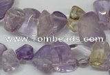 CCH314 15.5 inches 10*15mm ametrine chips gemstone beads wholesale
