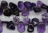 CCH315 15.5 inches 10*15mm amethyst chips gemstone beads wholesale