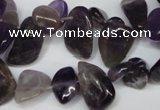CCH316 15.5 inches 10*15mm amethyst chips gemstone beads wholesale