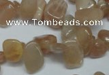 CCH321 15.5 inches 10*15mm moonstone chips gemstone beads wholesale