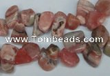 CCH328 15.5 inches 10*15mm rhodochrosite chips gemstone beads wholesale