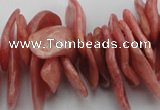 CCH401 15.5 inches 15*28mm - 18*35mm argentina rhodochrosite chips beads
